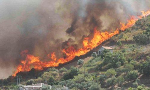 Incendi boschivi è record: 74.965 ettari bruciati nei primi sette mesi del 2017