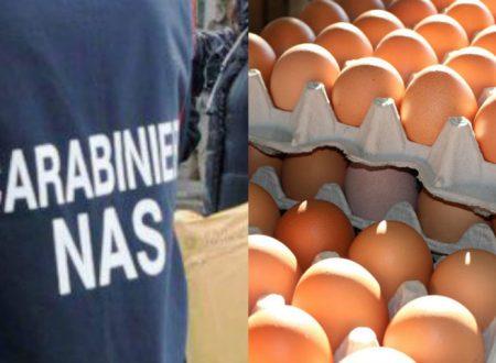 Uova contaminate da Fipronil: rischi concreti per la nostra salute?