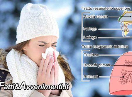 Salute & Benessere. Arriva l'inverno e il raffreddore: un vaccino potrebbe proteggerci