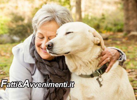 Salute & Benessere. Over 65: un cane allunga la vita